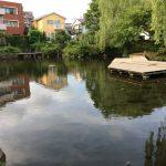 三島市近隣の公園レポート、噴水広場がある三島市大宮町の「菰池(こもいけ)公園」