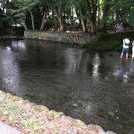 三島市近隣の公園レポート、水遊びができる三島市一番町の「白滝公園」