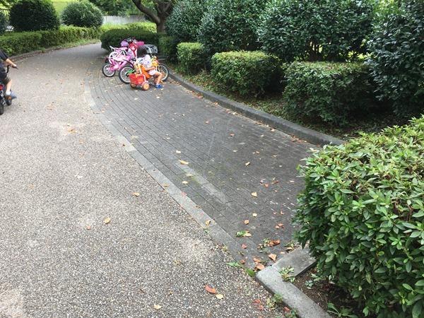 kamiiwasaki-park_6