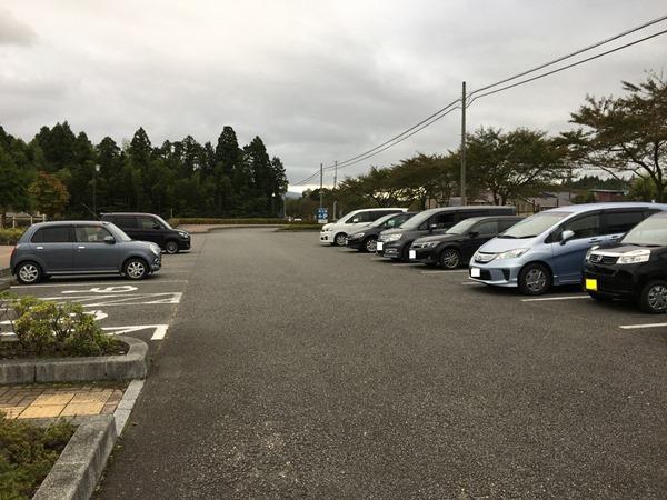 sakura-park_4