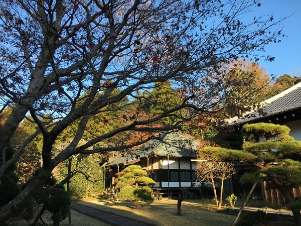 kouyou-mishima_19