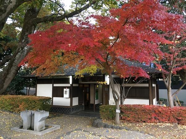 kouyou-mishima_30