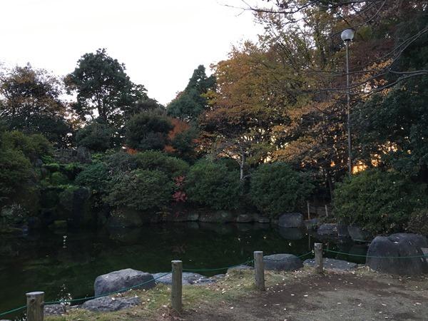 kouyou-mishima_33