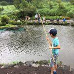 8月 お盆の時期の富士山こどもの国のロッジ・パオの宿泊予約は超激戦!!  運よくロッジの予約を取れた体験談
