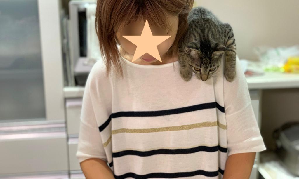 肩の上に乗るのが好きなネコ